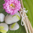 Spa stones, branches and flower on the big leaf — Stock Photo