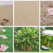 Collage of summer beach images - nature and travel background - Stock Photo