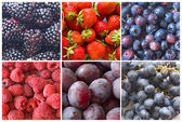 Collage of blue and red fruit — Stock Photo