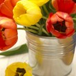 Red and yellow tulips — Stock Photo #11342082