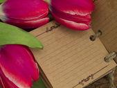Cuaderno vintage con tulipanes — Foto de Stock