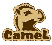 Camel icon — Stock Vector