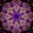 Mandala Purple eight-pointed  Flower — Stock Photo