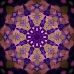Mandala Purple eight-pointed Flower — Stock Photo