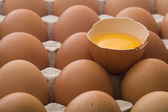 Raw eggs in an egg carton — Stock Photo