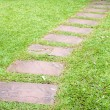 Walk way in garden — Stockfoto