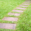 Walk way in garden — Stockfoto #12077590