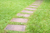 Walk way in garden — Stock Photo