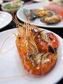 Shrimp on the dish — Stock Photo
