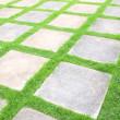 Beautiful grass tiles walk way in the garden — Stock Photo #12085218