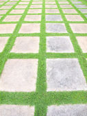 Beautiful grass tiles walk way in the garden — Stock Photo