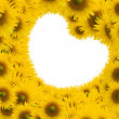Beautiful sunflower with white space heart shape — Stock Photo #12105345