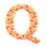Q,flower alphabet isolated on white — Stock Photo