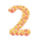 2,flower alphabet isolated on white — Stock Photo