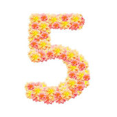 5,flower alphabet isolated on white — Stock Photo