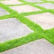 Beautiful grass tiles walk way in the garden - Stock Photo