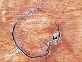 La texture du bois se recoupent. peut être utilisé comme arrière-plan — Photo