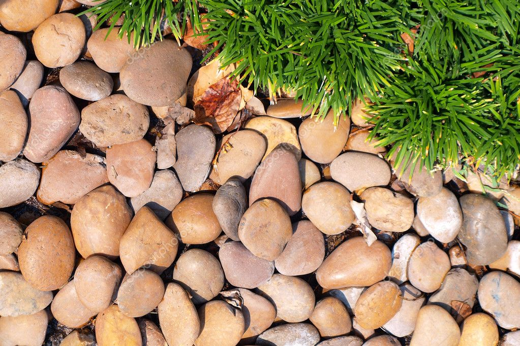 Grass and stones — Stock Photo #12196753