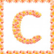 Stock Photo: C,flower alphabet isolated on white with flame