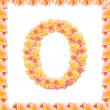 Stock Photo: O,flower alphabet isolated on white with flame