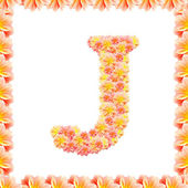 J,flower alphabet isolated on white with flame — Stock Photo