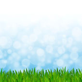 Abstract blue tone bokeh background with green grass. — Stock Photo