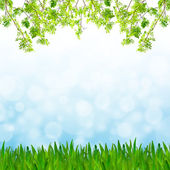 Abstract blue tone bokeh background with green grass and fresh g — Stock Photo
