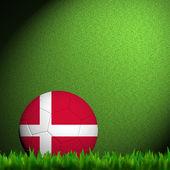 3d fotbalové vlajky dánsko radikál v zelené trávě — Stock fotografie