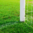 Soccer goal football green grass field — Stock fotografie