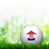 3D Football Croatia Flag Patter in green grass and background — Stock Photo