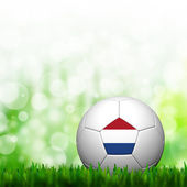 Bandiera di paesi bassi 3d calcio patter di threshold e di erba verde — Foto Stock