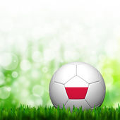 3d Voetbal Polen vlag geklets in groen gras en achtergrond — Stockfoto