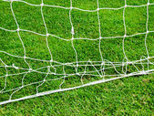 White football net and green grass — Stock Photo