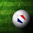France Flag Pattern 3d rendering of a soccer ball in green grass — Stock Photo #12242603