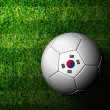 Korea Flag Pattern 3d rendering of a soccer ball in green grass — Stock Photo