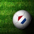 Netherlands Flag Pattern 3d rendering of a soccer ball in green — Stock Photo