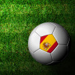 Spain Flag Pattern 3d rendering of a soccer ball in green grass — Stock Photo