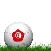 3D Soccer balll Tunisia Flag Patter on green grass over white ba — Stock Photo