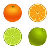 Lime and orange — Stock Vector