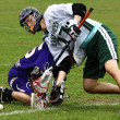 Lacrosse — Stock Photo #11257853