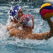 ������, ������: Mens water polo