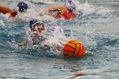 Womens water polo — Stock Photo