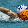 Womens water polo - Stock fotografie