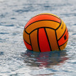 Womens water polo — Foto de Stock