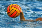 Women's water polo — Stock Photo