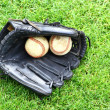 Baseball — Stock Photo #11789670
