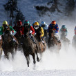 Stock Photo: Horse races in St. Moritz