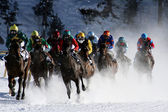 Horse races in St. Moritz — Stock Photo