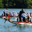 Dragon boat race in  the Rhine/Schweiz - Foto Stock