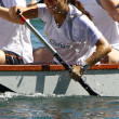 Dragon boat race in  the Rhine/Schweiz - Stock Photo